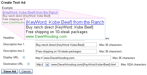 adwords keyword insertion